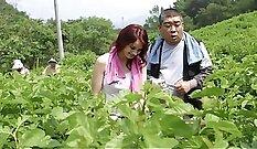 arberis interracial dildo voting korean