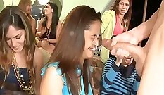 Amateur Party In A Boat Compilation IBF Sex Tape With