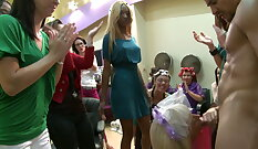 Lady Stop Pussy Party